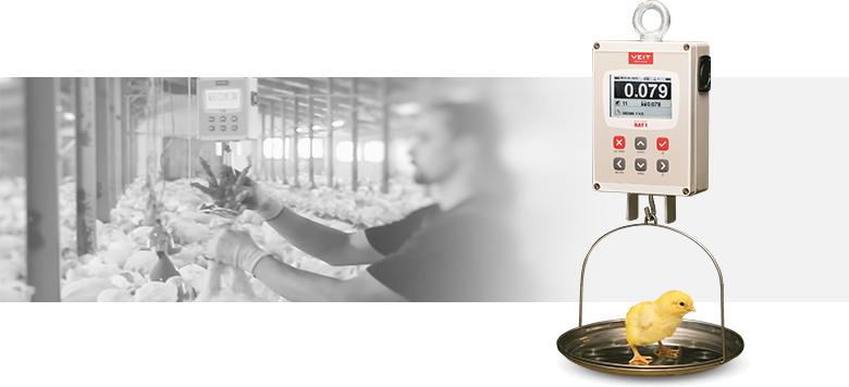Manual poultry scale BAT1 - VEIT Electronics